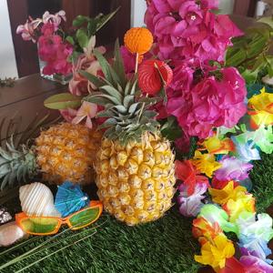 Tropical / Hawaiian